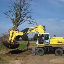 Bomen verplanten in Apeldoorn