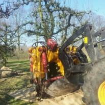 bomen verplantmachine in Utrecht